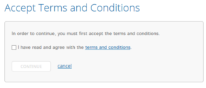 Accept Terms and Conditions screen in online banking.